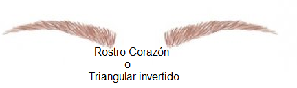 rostro-corazon-o-triangular-invertido