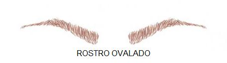 rostro-ovalado
